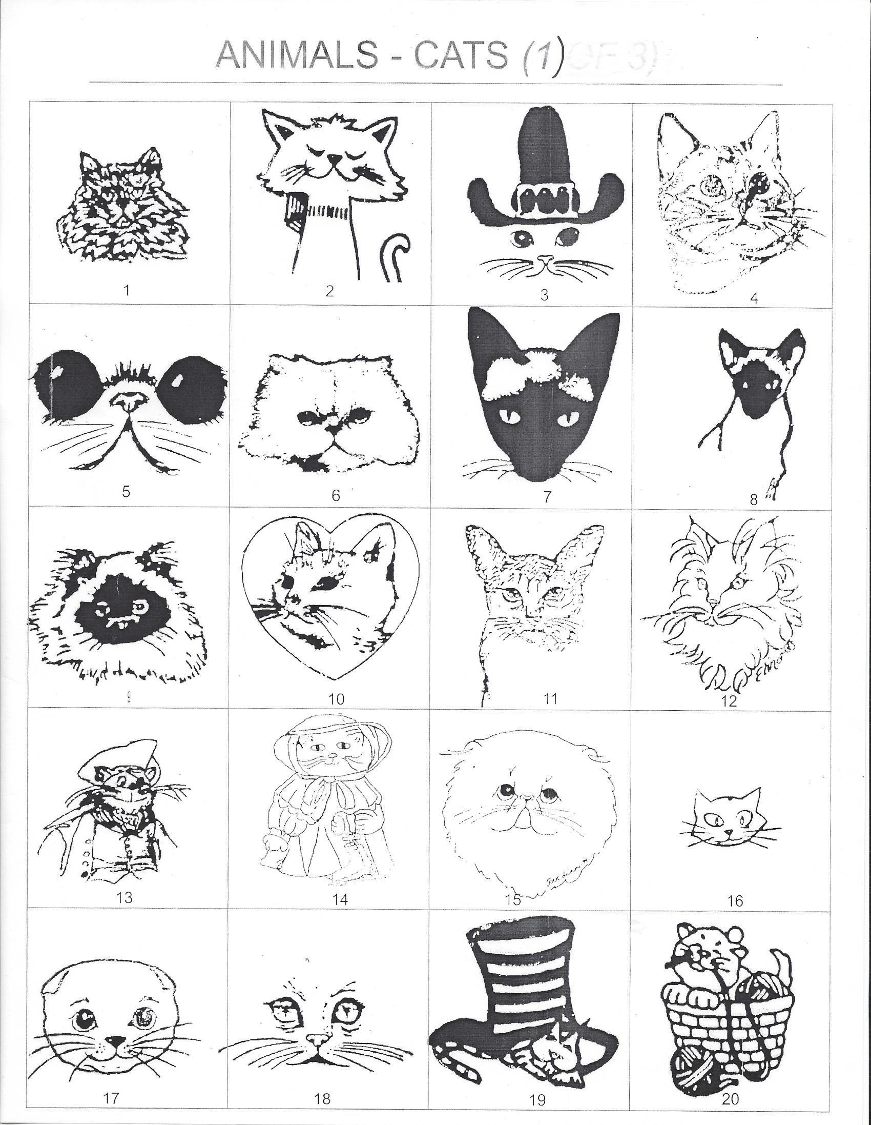 Animals Cats 1