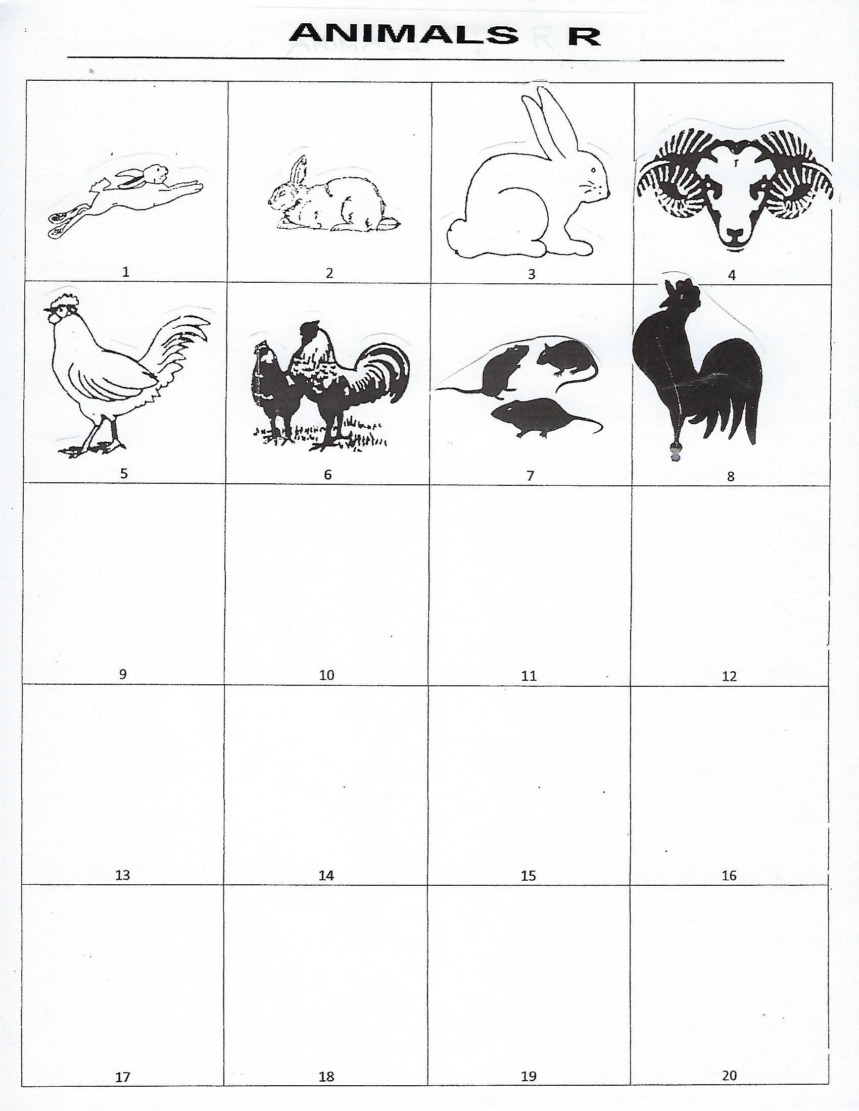 Animals R