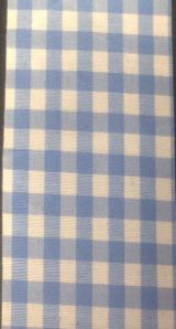 gingham-lt-blue-white
